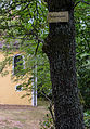 Freudenberg-9896.jpg