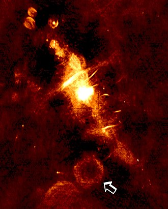 Radio astronomy - A radio image of the central region of the Milky Way galaxy. The arrow indicates a supernova remnant which is the location of a newly discovered transient, bursting low-frequency radio source GCRT J1745-3009.