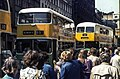 GG 16n3 Buses Wiki 5.jpg