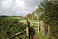 Gate on the 1066 Country Walk - geograph.org.uk - 1577752.jpg