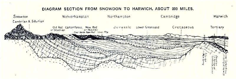 Geology of the UK: Section from Snowdon to Harwich showing underlying strata.  This cross section shows what would be seen in a deep cutting nearly E. and W. across England and Wales. It shows also how, in consequence of the folding of the strata and the cutting off of the uplifted parts, old rocks which should be tens of thousands of feet down are found in borings in East Anglia only 1000 feet or so below the surface.