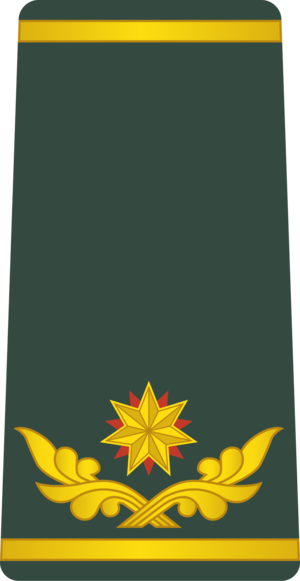 David Nairashvili - Image: Georgia Army OF 7