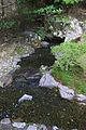 Ginkakuji Kyoto09-r.jpg