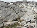 Glacial striation 21149.JPG