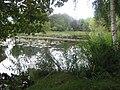 Glansevern Hall pond - geograph.org.uk - 1474021.jpg