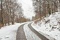 Glen Nevis in wintery weather - geograph.org.uk - 1780023.jpg