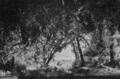 Gluck - Armide - Esquisse d'Amable pour Armide (IIIe Acte) b - Paris, Théâtre de l'Opéra Garnier, 12-04-1905.png