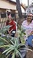 Goa -- Vendors selling plants 002.jpg