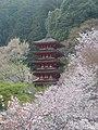 Gojyunoto Hasedera Spring01.jpg