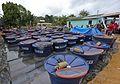 Governo entrega equipamentos agrícolas a comunidades de Tarauacá (26088204186).jpg