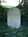 Grave of Francis Darwin - geograph.org.uk - 382508.jpg