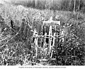 Grave of Willie Stott near Dawson, Yukon Territory, 1899 (AL+CA 2712).jpg