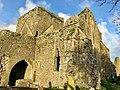 Graveyard, Hore Abbey, Caiseal, Éire - 31644774287.jpg