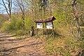 Grenzsteinweg Naturschutzgebiet Wolferskopf 01.jpg