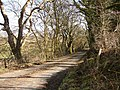 Gribdae Lane - geograph.org.uk - 695386.jpg