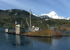 Viola (trawler) - Viola and Albatros in Grytviken