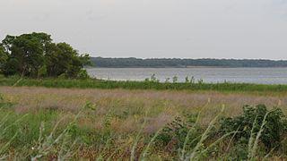 Hagerman National Wildlife Refuge Nature reserve in northwestern Grayson County, Texas, United States