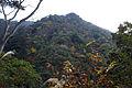Haigata-yama01s3872.jpg