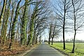 Hamm, Germany - panoramio (5298).jpg