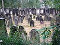 Hannover Juedischer Friedhof An der Strangriede 2.jpg