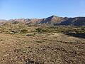 Hauts plateaux-Entre Lalibela et Sekota (2).jpg
