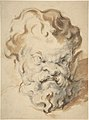Head of Silenus MET DP805577.jpg