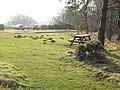 Hepburn picnic site - geograph.org.uk - 693373.jpg