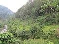 Hills and flat land at bank of Mai river - panoramio.jpg