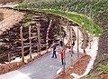 Hops sculpture, Eden Project, St Blaise CP - geograph.org.uk - 655294.jpg