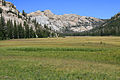 Horse Meadow Emigrant Wilderness.jpg