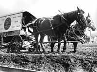 Horses and delivery wagon stuck in the mud.jpg