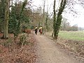 Horses on bridleway, near Watford - geograph.org.uk - 118325.jpg