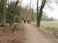 Horses on bridleway, near Watford - geograph.org.uk - 118325.jpg