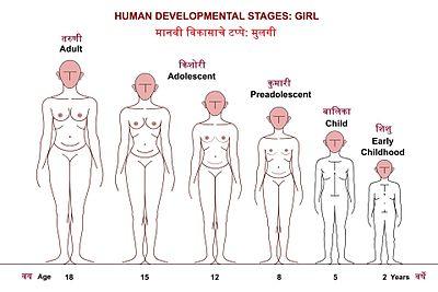 शिशुवयापासून तारुण्यापर्यत मुलीच्या वाढ व विकासाच्या टप्प्यांच्या प्रातिनिधिक आकृत्या.