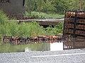 Iğdır kayısısı sular içinde - panoramio.jpg