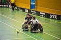 IBF Falun vs Göteborgs RIF 2013-01-26 15.jpg