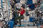 ISS-58 Anne McClain works inside the Columbus module (1).jpg