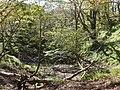 Ibarakawacho, Higashiomi, Shiga Prefecture 527-0216, Japan - panoramio (43).jpg