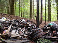 Illegal dump at the hearth of the Belgian Forest (2682745838).jpg