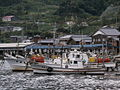 Ine-ura fishing port(伊根漁港).2010-10-03 490.JPG