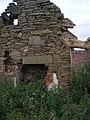 Inside ruined Cottages at Greenford Bridge - geograph.org.uk - 493828.jpg