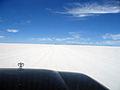 Isla de Pescado Bolivia Salar de Uyuni.jpg