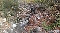 Ismayilli part of Shahdag National Park 11.jpg