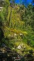 Itabira - State of Minas Gerais, Brazil - panoramio (114).jpg