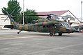 JGSDF UH-60JA 20090822-02.JPG