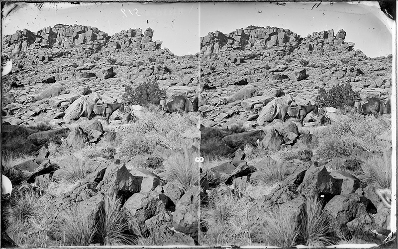 File:Jack Hillers. About halfway up the mountain with two saddle horses. Old nos. 300, 405. - NARA - 517850.tif