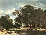 Jacob Isaacksz. van Ruisdael - The Large Forest - WGA20488.jpg