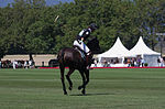 Jaeger-LeCoultre Polo Masters 2013 - 31082013 - Match Legacy vs Jaeger-LeCoultre Veytay for the third place 3.jpg