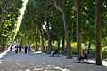 Jardin des Plantes, Paris 3 June 2015.jpg