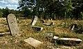 Jewish cemetery Otwock (Karczew - Anielin) IMGP7623.jpg